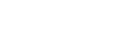 Touch Incentive Marketing Logo Diap
